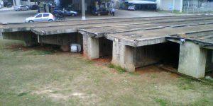 Corte e Remoção em passarela Prestes Maia - Campinas